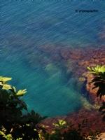 Balkondan Deniz