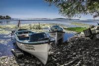 Göl Yazı