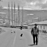 Orda Bir Köy Var Uzakta