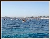 Olta Balıkçıları