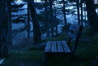 Yalnız Oturulmuyor