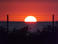 Güneşin Zaptı
