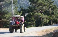 Toplu Taşıma