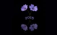 Hoşgeldin 2015