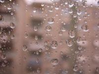 Yağmur Yağdı Bugün...