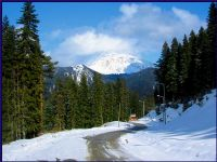 Ilgaz Mountain