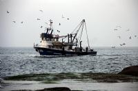 Balıkçılar...