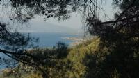 Göle Bakış