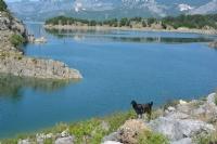 Göl Kenarında Gezinti