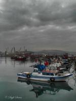 Şehr-i Yâr . . .