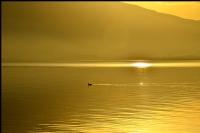 Altın Göl....