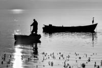 Balıkçı İle Balıkçıl