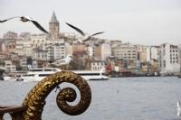 İstanbul Ve Martıların Dansı