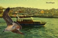 Bir İstanbul Tablosu..