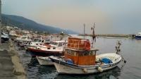 Liman 3