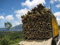Bambular Yüklendi...