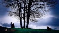 Ulu Ağaç