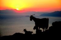 Dalyan'da Günbatımı