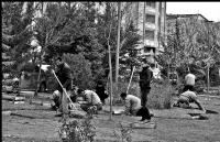 Bahara Hazırlık