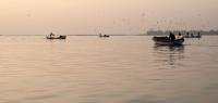 Martılar, Balıkçılar Ve Şehir