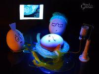 Egg M.D.