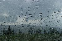 Yağmur'un Sesine Bak