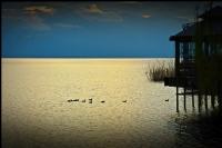 İznik Gölünden..2