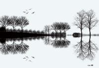 Siyah-beyaz Hayaller...