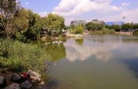 Bakırköy Botanik Park_21
