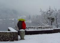 Kışın Rengi