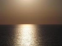 Denizin Akordeon Solosu
