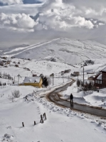 Ordu_kış