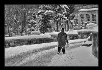 Kış..