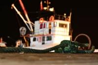 Balıkçı Bağı
