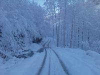 2010 Kış