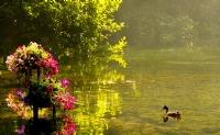 Ohrid Gölü... (hemen Yanındaki Cennet'ten)