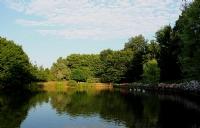 Atatürk Arboretumu_28
