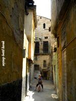 Çıkmaz Sokakta Ortaya Çıkan Mutluluk......
