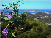 Mor-mavi Bafa Gölü