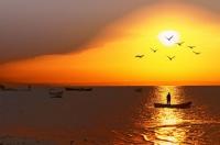 Bir Balıkçı Öyküsü