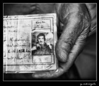 Old Photographer's Hand