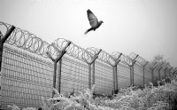 Özgürlük Masalları-2