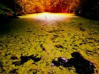 Sonbahar Da Göl