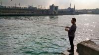Haliç'de Balık