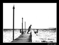 Hayat Bir Deniz