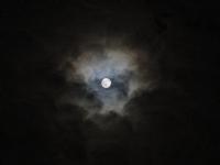 Ay Işığı...