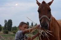 Çocuk Ve Atı