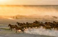 toz duman - Fotoğraf: Muhammed Nuri Sert