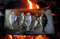 Mermerde Balık