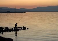 Balıkçı.
